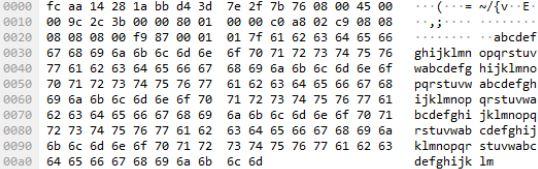 Darstellung eines ICMP-Ping-Paketes mit 128 Byte Daten