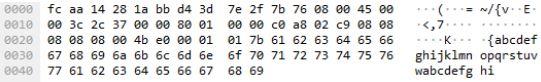 Darstellung ICMP-Paket des Windows-Befehls ping 8.8.8.8