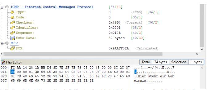 Ein ICMP-Paket mit manipuliertem Datenanteil